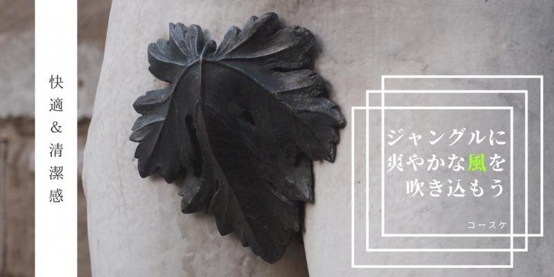 【2020年版】竿と玉の脱毛評判調査!|メリット&デメリットを徹底解説!